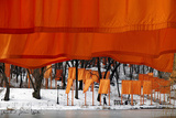 The Gates, Foto 52 Collectable Print by  Christo
