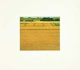 Kornfelder Limited Edition by Michael Rausch