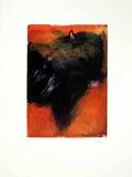 Stier Orange, c.2001 Limited Edition by Hans Richter