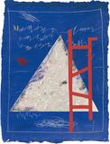 Silences M Limitierte Auflage von James Coignard