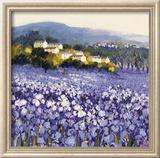 Champs D'Iris, Provence Plakat af Hazel Barker