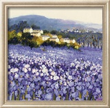 Champs D'Iris, Provence Posters by Hazel Barker