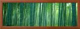 Bamboo Forest, Sagano, Kyoto, Japan Framed Photographic Print