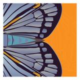 Tangerine Iris Giclée-Druck von Belen Mena