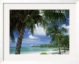 Palms on Shore, Cayman Kai Near Rum Point, Grand Cayman, Cayman Islands, West Indies Impressão fotográfica emoldurada por Ruth Tomlinson