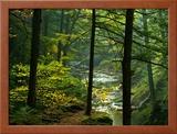 Texas Falls, Vermont, USA Framed Photographic Print by Joe Restuccia III
