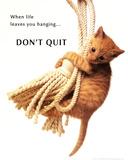 Don't Quit Kitten on Rope Kunstdruck