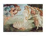 O nascimento de Vênus  Posters por Sandro Botticelli