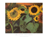 Sunflowers Posters by Emil Nolde