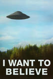 The X-Files I Want To Believe TV Poster Print Plakater