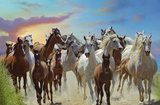 Roaming Free (Horses) Art Poster Print Posters