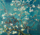Vincent Van Gogh Turquoise Almond Branches in Bloom, San Remy Art Poster Print Posters