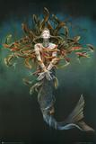 Sheila Wolk Metamorphosis Art Print Poster Posters