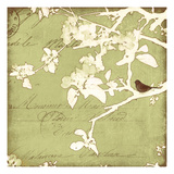Song Birds I - Green Premium Giclee Print by Amy Melious