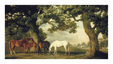 Green Pastures (A Family Group) Premium Giclée-tryk af George Stubbs