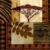 Acacia Sunrise II Posters por Keith Mallett