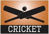 Cricket Orange Sports Poster Print Posters