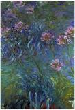 Claude Monet Jewelry Lilies Art Print Poster Prints