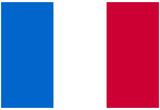 France National Flag Poster Print Affiches