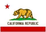 California State Flag Poster Print Poster