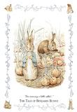 Beatrix Potter (The Tale Of Benjamin Bunny) Art Poster Print Billeder