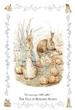 Beatrix Potter (The Tale Of Benjamin Bunny) Art Poster Print Posters