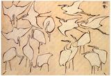 Katsushika Hokusai Cranes Art Poster Print Posters