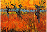 Vincent Van Gogh Willows at Sunset Art Print Poster Foto