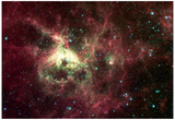 Tarantula Nebula Space Photo Art Poster Print Fotografia