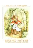 Beatrix Potter The Tale Of Peter Rabbit Art Print Poster Photo