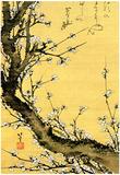 Katsushika Hokusai Flowering Plum Tree Art Poster Print Posters