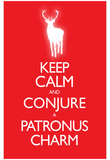 Keep Calm and Conjure a Patronus Charm Carry On Spoof Poster Print Posters