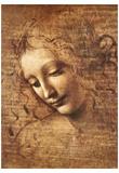 Leonardo Da Vinci (Female Head, La Scapigliata) Art Poster Print Art Poster Print Affischer