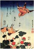 Katsushika Hokusai Wild Strawberries and Birds Art Poster Print Print