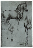 Leonardo da Vinci (Horse trials) Art Poster Print Kunstdrucke