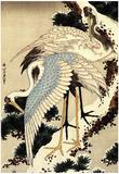 Katsushika Hokusai Two Cranes on a Pine Covered with Snow Art Poster Print Plakater
