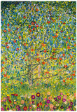 Gustav Klimt Apple Tree Art Print Poster Pôsters