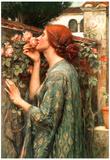 John William Waterhouse My Sweet Rose Art Print Poster Posters