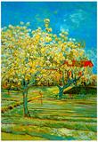 Vincent Van Gogh Orchard Art Print Poster Poster