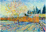 Vincent Van Gogh Orchard with Cypress Art Print Poster Poster