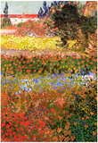 Vincent Van Gogh Flowering Garden Art Print Poster Photo