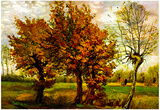 Vincent Van Gogh Autumn Landscape with Four Trees Art Print Poster Poster