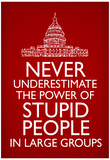 Never Underestimate Stupid People in Large Groups Poster Póster