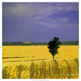 Farmscape I Arte di James Burghardt