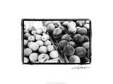 Farmer's Market III Arte por Laura Denardo