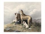 Highland Dogs Posters af Edwin Henry Landseer