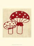 Best Friends - Mushrooms Prints by Chariklia Zarris