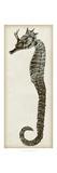 Vintage Seahorse I Poster
