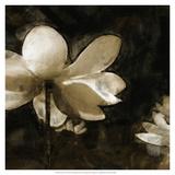 Bronze Lily II Art by Noah Bay