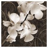 Orchid and Swirls I Posters af Christine Zalewski